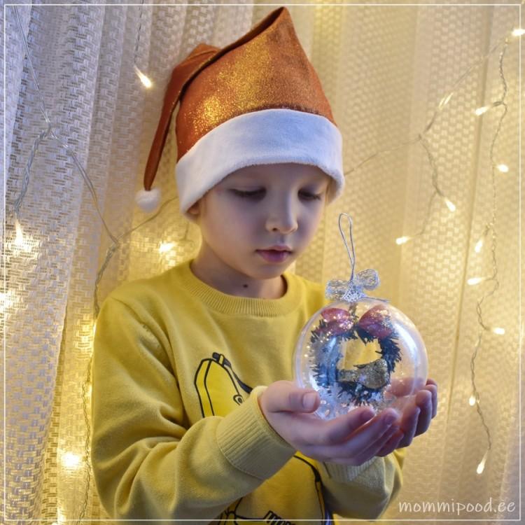Jõulukuul pärja ja linnuga