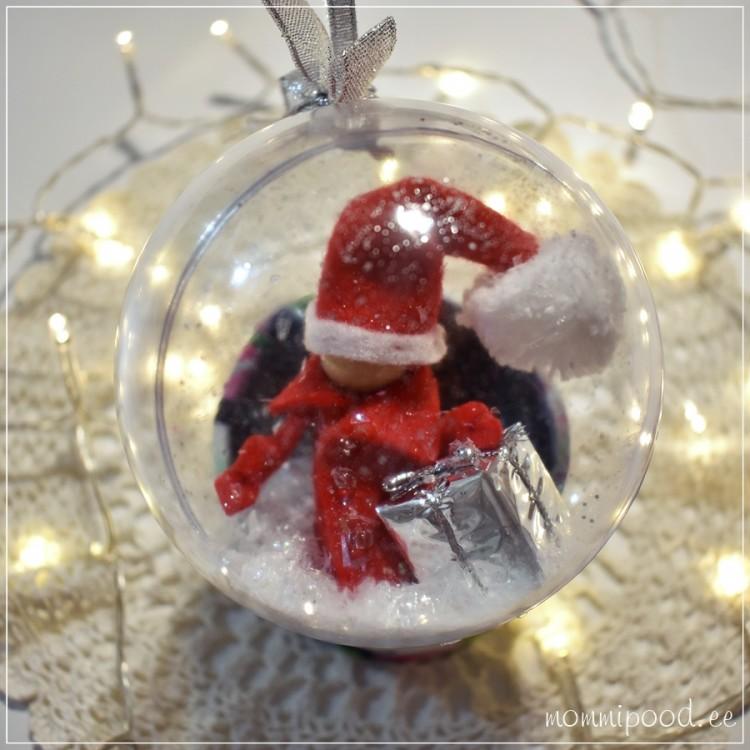 Jõuluehe, PÄKAPIKK